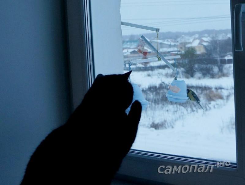 cat112